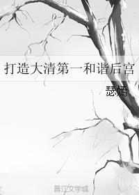 打造大清第一和谐后宫热门推荐小说